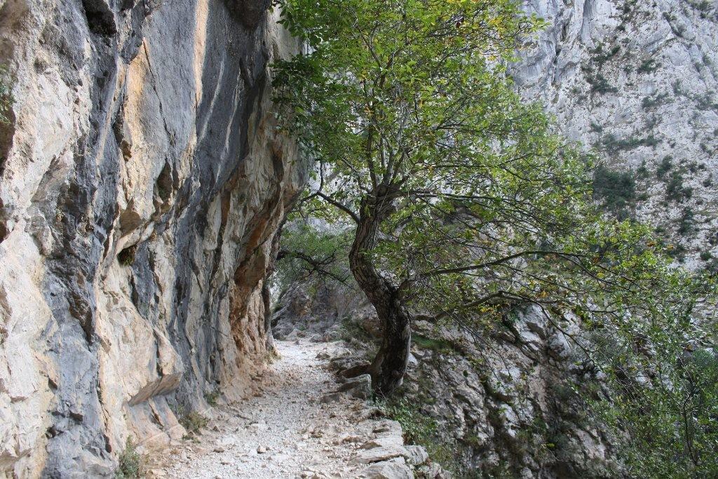 senderismo asturias